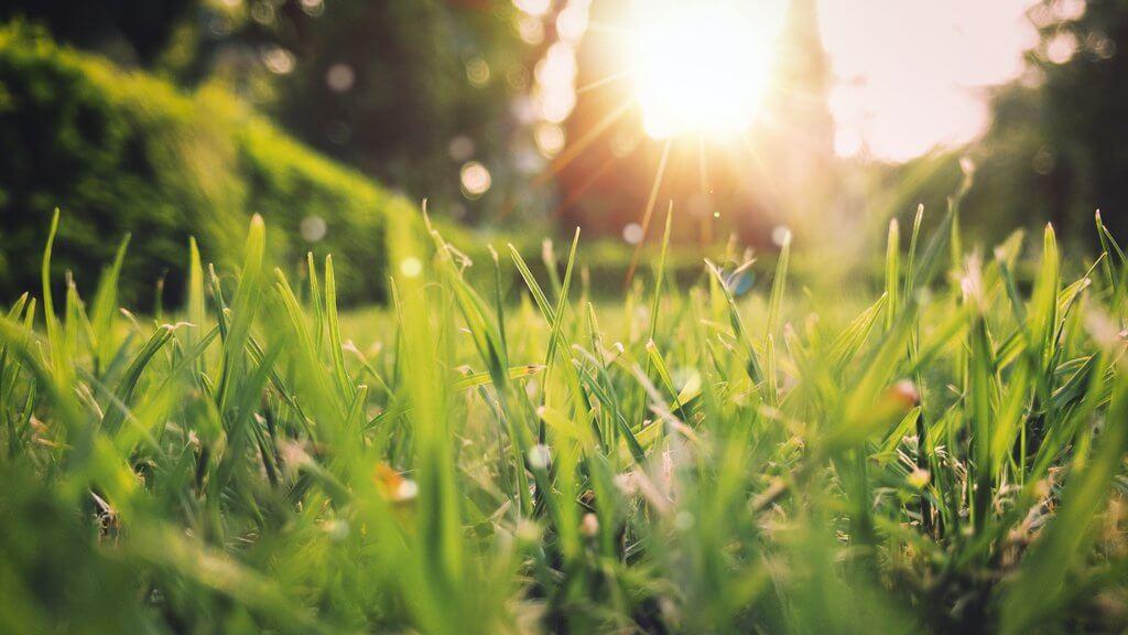 PRESSEMEDDELELSE Nyd solen med omtanke og afstand