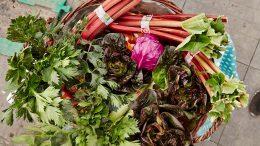 PRESSEMEDDELELSE Danskerne koeber dobbelt op paa oekologisk frugt og groent