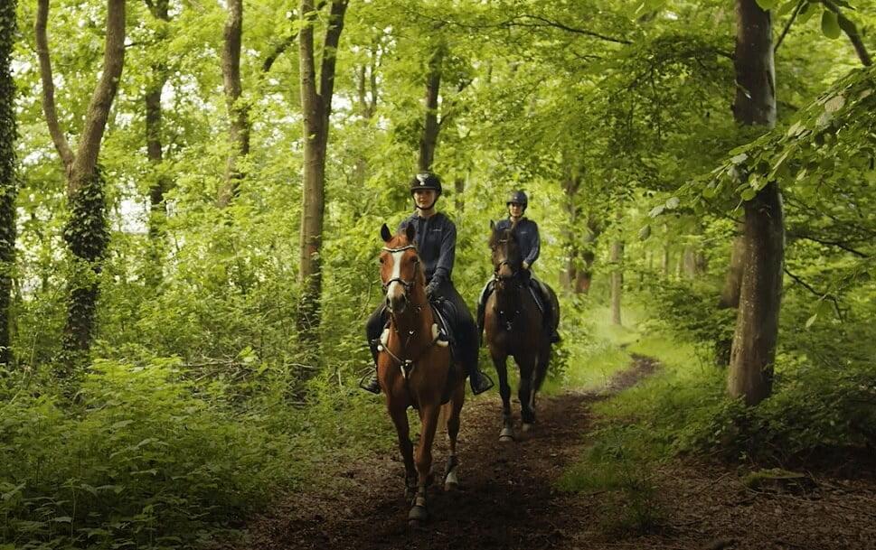 PRESSEMEDDELELSE Ny afmaerket hesterute ved Tronsoeen og Grindsted Plantage