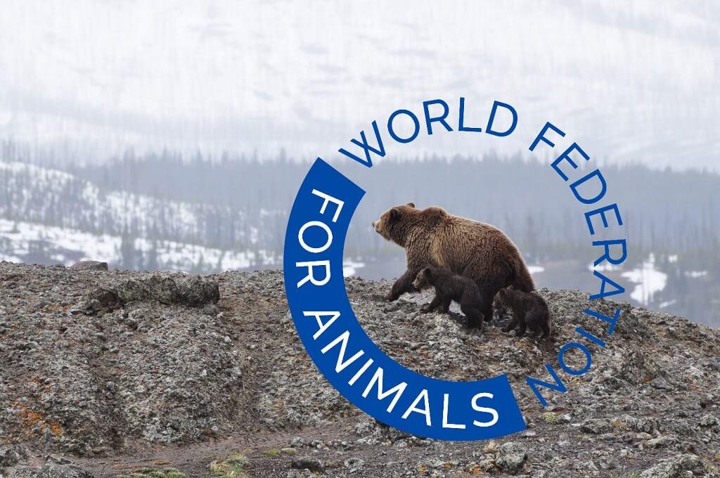 PRESSEMEDDELELSE Ny verdensomspaendende dyrevelfaerdsorganisation ser dagens lys